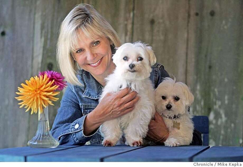 Cheryl Schultz, with her two maltese dogs Miles and Marley, finds solace in the dahlia garden behind her Richmond District home in San Francisco. 9/27/05 Mike Kepka / The Chronicle Photo: Mike Kepka