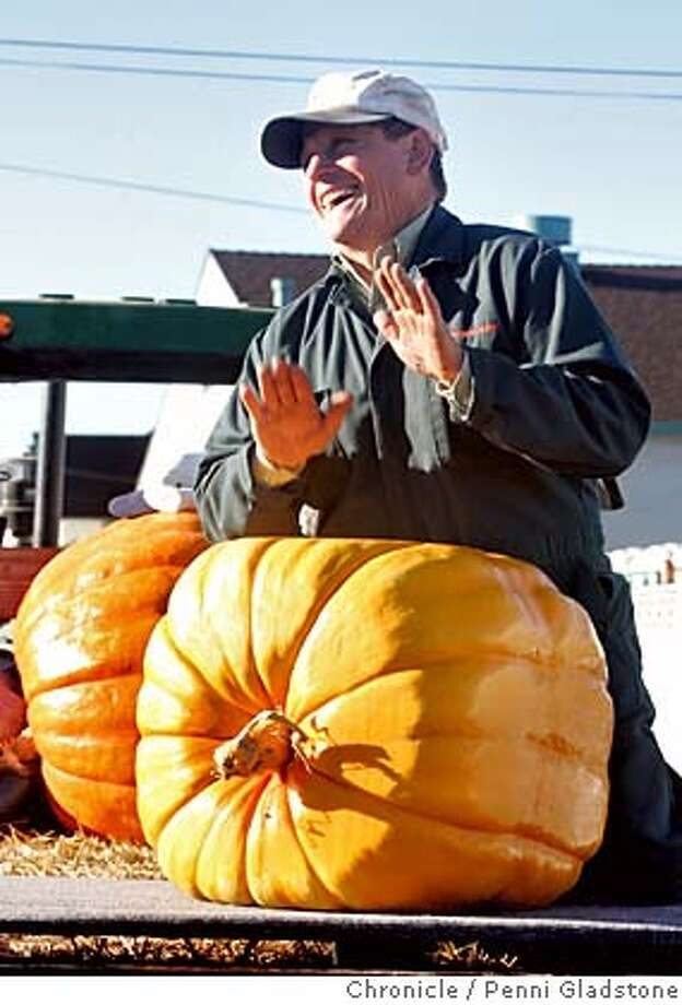 "PUMPKIN11_0122_PG.JPG Proud of his square pumpkin that grew in a box.  likes to be called ""Farmer John."" His last name is Muller, local Half Moon Bay farmer. Won for the most beautiful. (ck to make sure that is what this part of contest is called)  the annual pumpkin weighing in half moon bay is officially called the SAFEWAY WORLD CHAMPIONSHIP PUMKIN WEIGH-OFF. the winner will receive $5/lbs; there's a special prize of $500 for the ""most beautiful pumpkin.""  San Francisco Chronicle, Penni Gladstone  Photo taken on 10/10/05, in Half Moon Bay, Photo: Penni Gladstone"