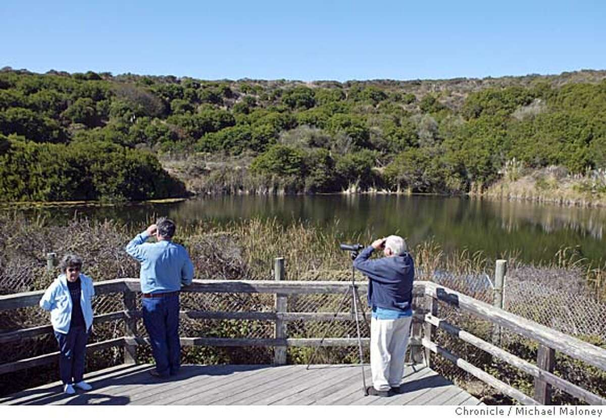 Bird watchers at the
