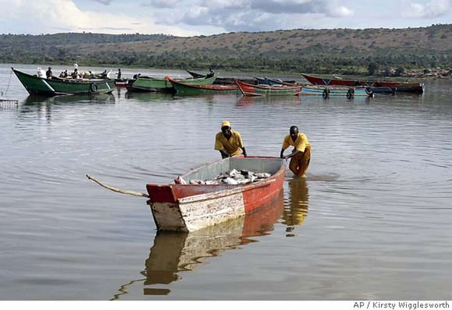 Fishermen push a small boat full of fish toward a pier in Lake Victoria at Jinja, Uganda. Receding water levels attributed to global warming, one of many signals worldwide, have reduced the catch of local fishermen and destroyed fish breeding grounds. Associated Press photo by Kirsty Wigglesworth
