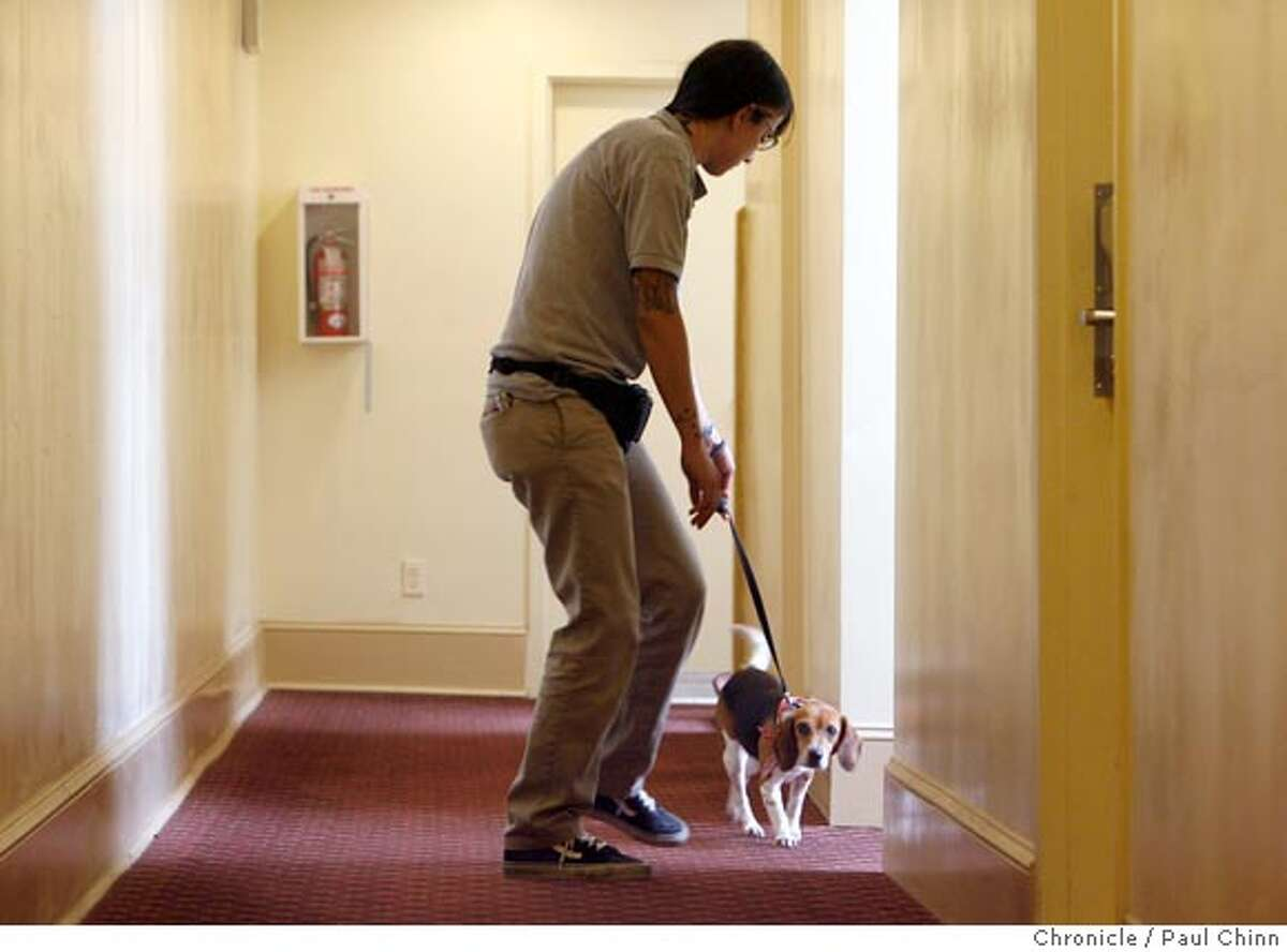 Ladybug the beagle and her handler Sarah Trigueros searched for bedbugs at the Empress Hotel in San Francisco, Calif. on Friday, April 6, 2007. Ladybug is a specially-trained dog able to detect bedbugs with her keen sense of smell. The National Pest Management Association reports a 71 percent increase in bed bug calls since 2000. PAUL CHINN/The Chronicle **Sarah Trigueros Ran on: 04-08-2007 Back with a vengeance: creepy, blood-sucking bedbugs. Ran on: 04-08-2007 Back with a vengeance: creepy, blood-sucking bedbugs.