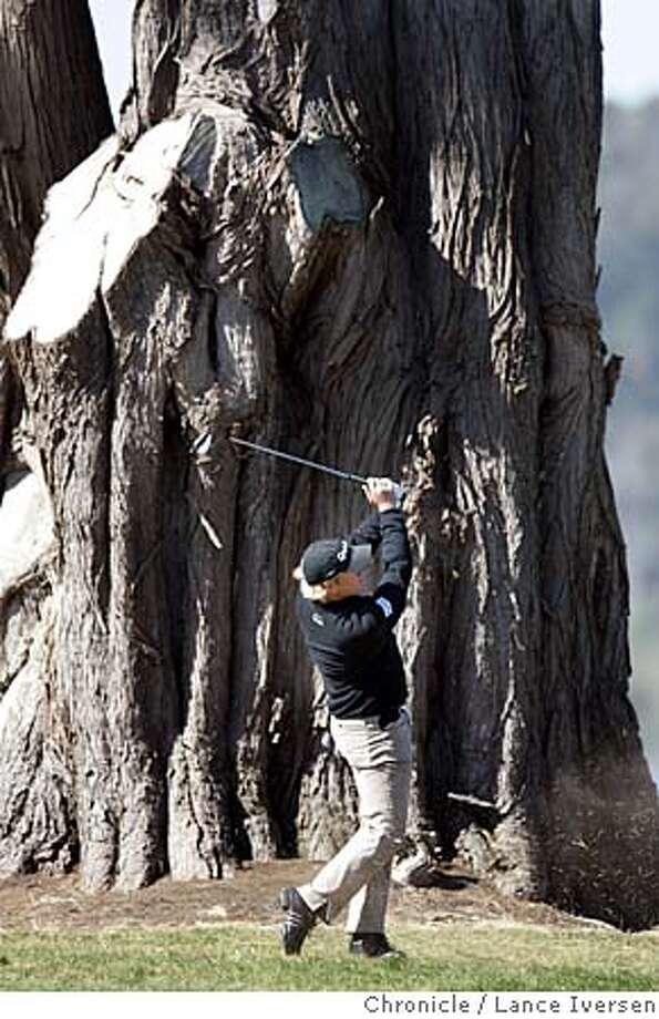 AMEXGOLF_1396.jpg_  A giant cypress tree on the 18th fairway dwarfs Northern Ireland�s Graeme McDowell. The 3rd round of the American Express Championship got underway at San Francisco's Harding Park Thursday under sunny skies. By Lance Iversen/San Francisco Chronicle Photo: Lance Iversen