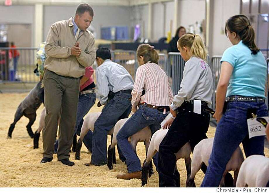 Kolby Burch inspects the entrants while judging the 4-H Junior Classic Lamb category at the Grand National Rodeo and Livestock Show at the Cow Palace in Daly City, Calif. on Friday, April 6, 2007. The Grand National Foundation that awards roughly $7000 in scholarships to 4-H kids to participate in these competitions. Their mission is to support youth in agriculture.  PAUL CHINN/The Chronicle  **Kolby Burch Photo: PAUL CHINN