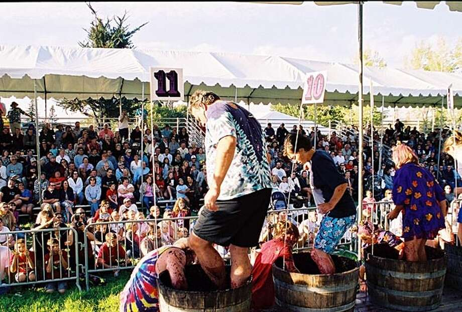 Nbstomp30.JPG Competitors at a previous World Championship Grape Stomp. Courtesy Sonoma County Harvest Fair Photo: Courtesy