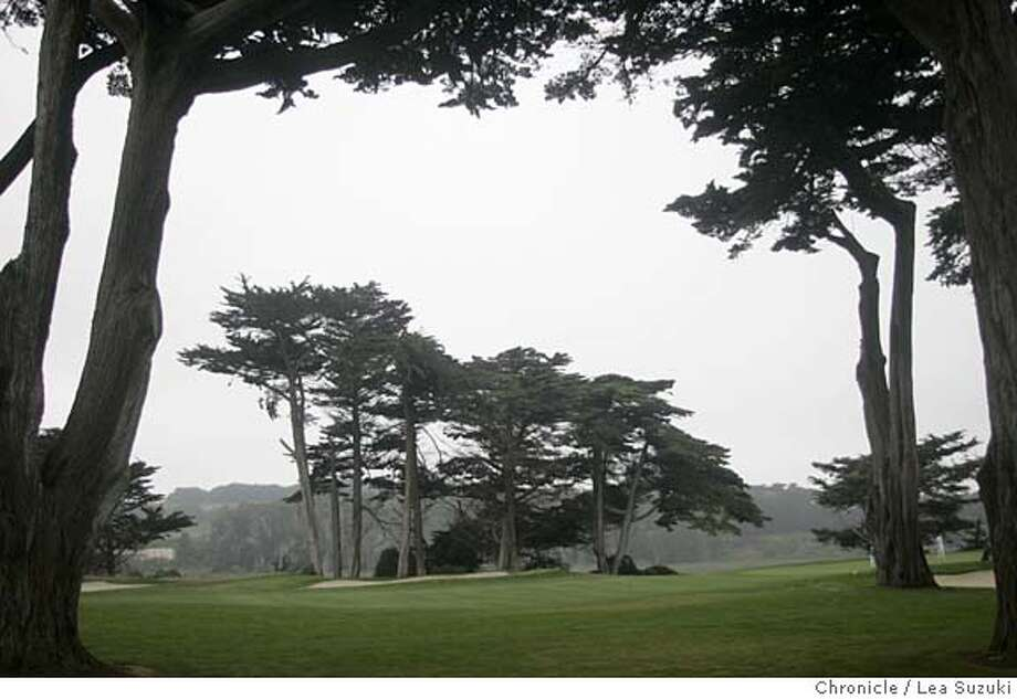 hardingpark_ls_107.JPG  Trees along 17th hole.  Need photos of Harding Park Golf Course for upcoming stories setting up American Express pro tournament there in early October. For story that will run sunday sept. 25, need shots of the narrow fairways and long rough. The holes that will be mentioned prominently in that story are the 4th, 14th and 18th. In addition, we'll need scenic photos, including the 18th, which involves a tee shot across lake merced. Plus the signature cypress trees that line the side of holes 14-17 will make great photos we can use in the next two weeks. Photo taken on 9/21/05 in San Francisco, CA. Photo by Lea Suzuki/ The San Francisco Chronicle Photo: Lea Suzuki