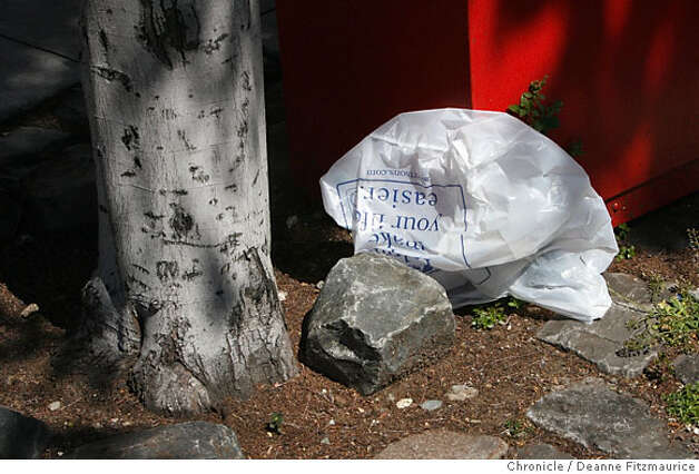 An Albertson's plastic bag blows in the wind down Fulton Street in front of Albertson's on Fulton at Masonic. An ordinance has been passed to outlaw plastic bags in large supermarkets in San Francisco in six months or so. Photographed in San Francisco on 3/28/07. Deanne Fitzmaurice / The Chronicle Photo: Deanne Fitzmaurice