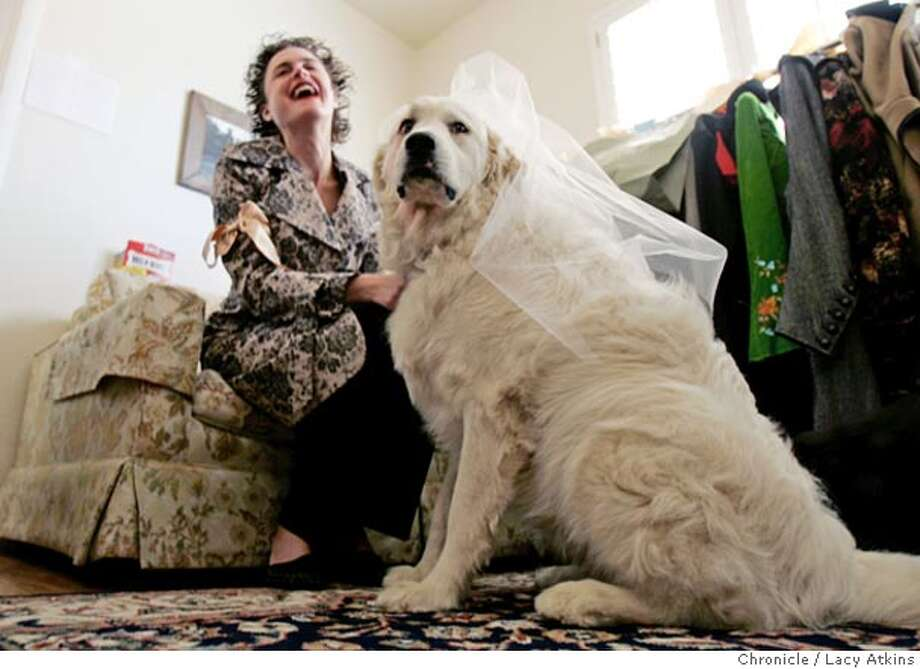 Shawna Coen dresses Belle her Great Pyrenees as a Bride for the Fashion Show,benefitting the Peninsula Humane Society, Sept. 17, 2005, in Burlingam. a fashion show wherein the dogs wear dog apparel from Plaza de Paws (a snazzy pet store) and the dogs' human wears outfits from Morning Glory Boutique. Both shops are in Burlingame. The entire event includes an auction, raffle, hors d' oeuvres, but we are only interested in the fashion show. We will run a very small caption block which will include information about how this event is benefitting the Humane Society, as well as funny quotes should the photographer happen to overhear one.  Photographer Lacy Atkins Photo: Lacy Atkins