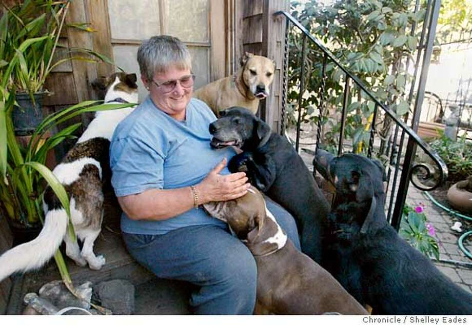 On 9/19/05 in Oakland.  Dog owners are anxious to see if the city of Oakland will limit dog owners to 3 dogs. Nancy Sidebotham, the woman in blue t-shirts owns 8 dogs and has been rescuing them since childhood. Sharon Olsen, in the pink , is fed up with her neighbor's dogs, they've attacked her kids and have been involved in other attacks as well. Chronicle Photo by Shelley Eades Photo: Shelley Eades
