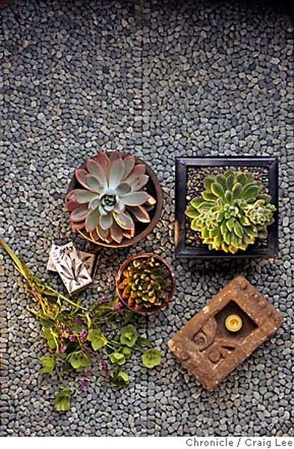 FLOWERSHOW_054_cl.JPG  Photo for Flower Show coming up in San Francisco.  Event on 3/13/07 in San Francisco. photo by Craig Lee / styling by Mercedes Feller MANDATORY CREDIT FOR PHOTOG AND SF CHRONICLE/NO SALES-MAGS OUT Photo: Photo By Craig Lee/The Chronicle