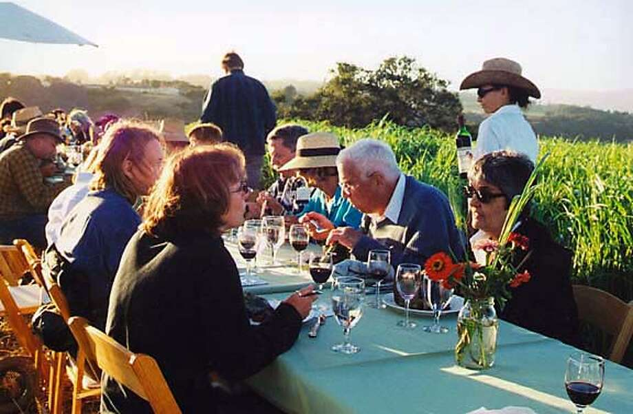 TRAVEL WATSONVILLE, Ca. -- Guests enjoy Chef Lynn Sheehan's Feast on the Farm overlooking Harkins Slough in Watsonville. Sheehan is co-founder of the Culinary Alliance of Santa Cruz County and proprietor of Sand Rock Farm in Aptos.  Josh Freedman/Sand Rock Farm Photo: Josh Freedman