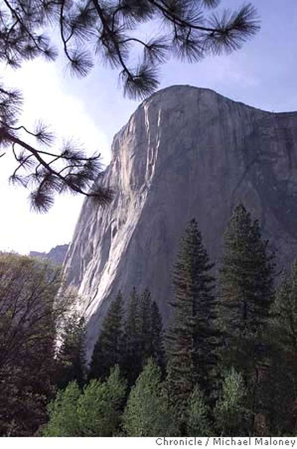 ELCAPITAN 2/C/20MAY99/MN/MJM  81 year old Gerry Bloch, expert guide Mike Corbett and Craig White scale the 7569 foot El Capitan. The trio started out on the climb last Thursday, May 13th. Bloch is hoping to break his own record of being the oldest to scale El Capitan CHRONICLE PHOTO BY MICHAEL MALONEY RUN 6 COLUMNS!! Photo: MICHAEL MALONEY