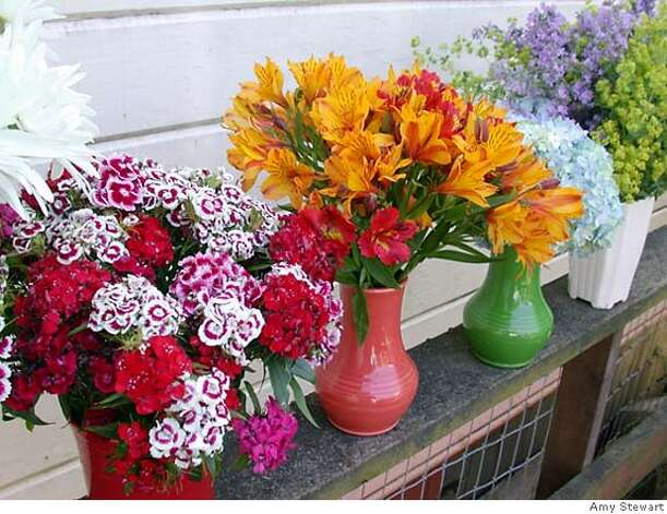 Advice on arranging flowers from the garden is simple: Group like with like. Here coreopsis, Shasta daisy, Sweet William, alstroemeria. Photo by Amy Stewart