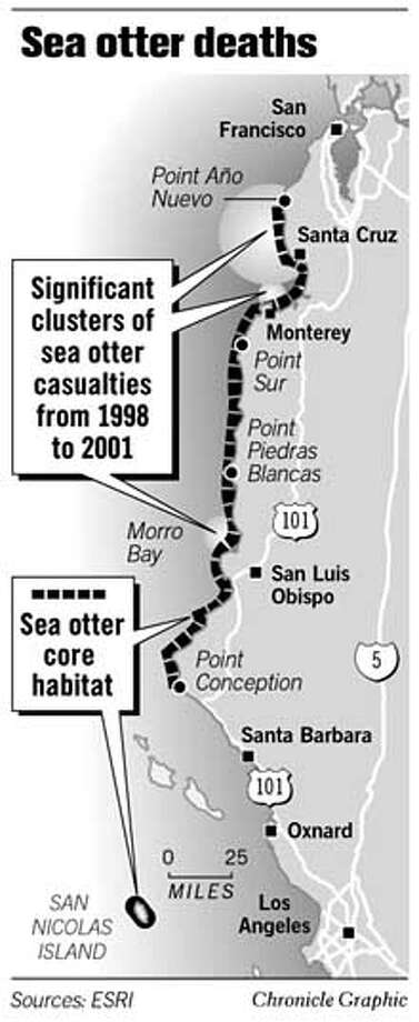 Sea Otter Deaths. Chronicle Graphic