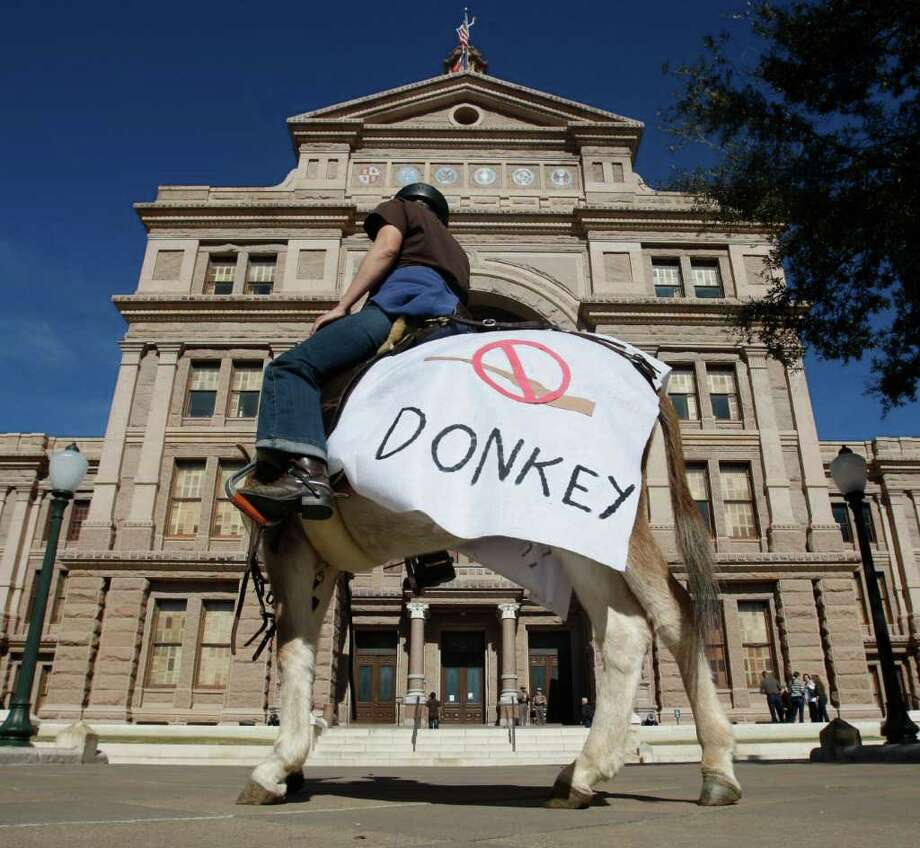 Veterinarian Jennifer Garretson of Waco rides a donkey Wednesday Jan. 18, 2012 outside the capitol in Austin after she and members of the Wild Burro Protection League delivered a petition to the governor's office asking him to order the Texas Parks and Wildlife Department to stop killing wild burros in Big Bend Ranch State Park.  (William Luther/wluther@express-news.net) Photo: William Luther, San Antonio Express-news / © 2012 SAN ANTONIO EXPRESS-NEWS