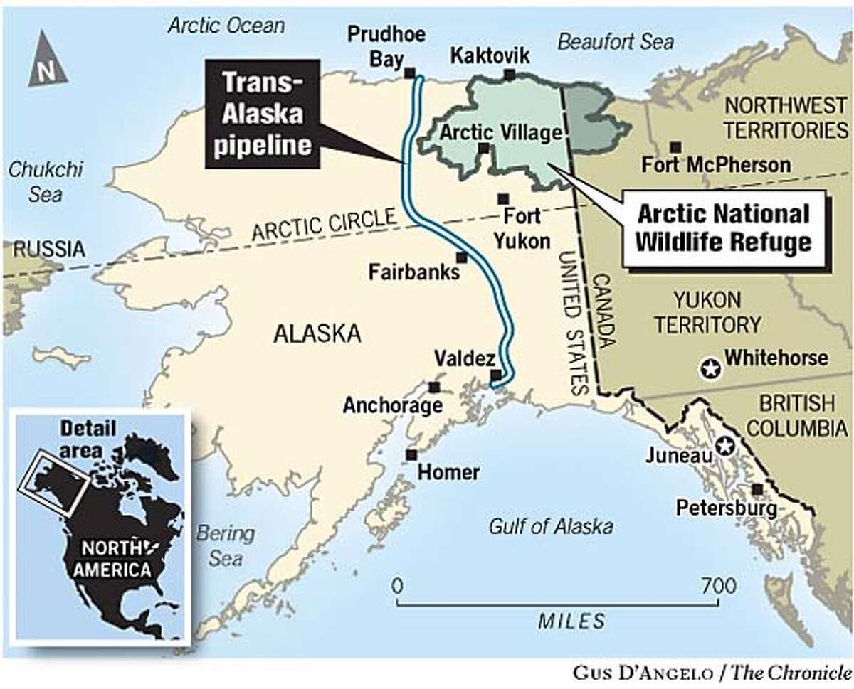 Drilling in the Refuge. Chronicle graphic by Gus D'Angelo
