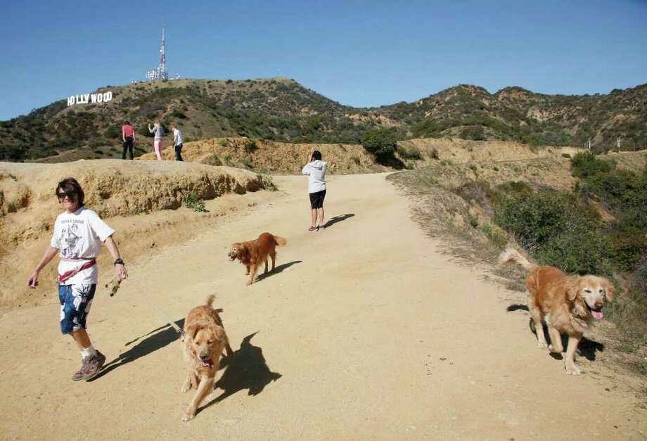 A hiker walks her dogs in Griffith Park near the Hollywood sign where a plastic bag containing a human head was discovered Tuesday by two dog walkers. Photo: Jason Redmond / FR74394 AP
