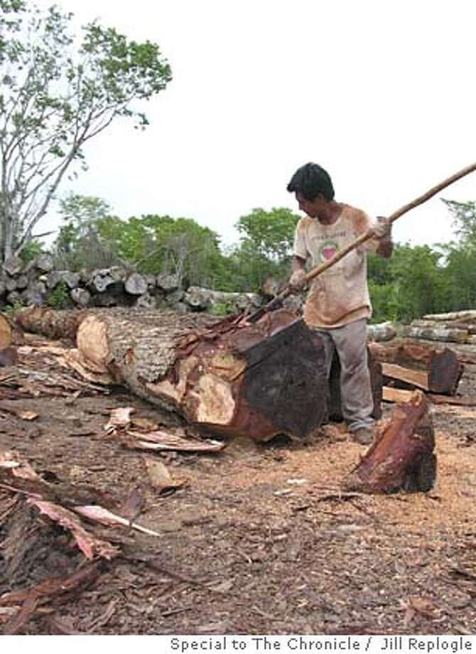 A member of the Carmelita cooperative strips the bark off of a mahogany log. Photo by Jill Replogle/Special to The Chronicle Photo: Jill Replogle/Special To The Chr