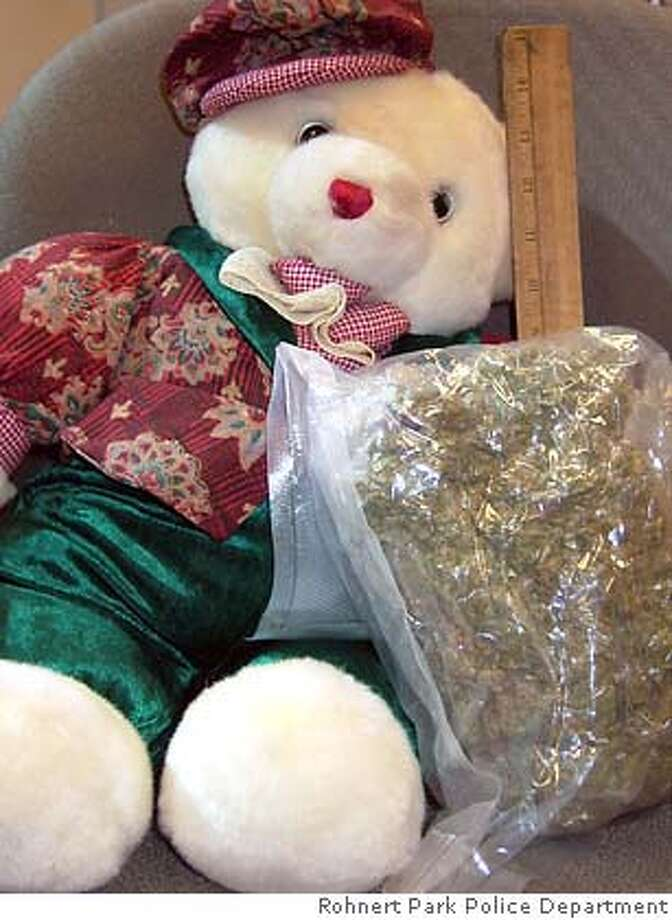 picture from the Rohnert Park police department of the teddy bear and marijuana.