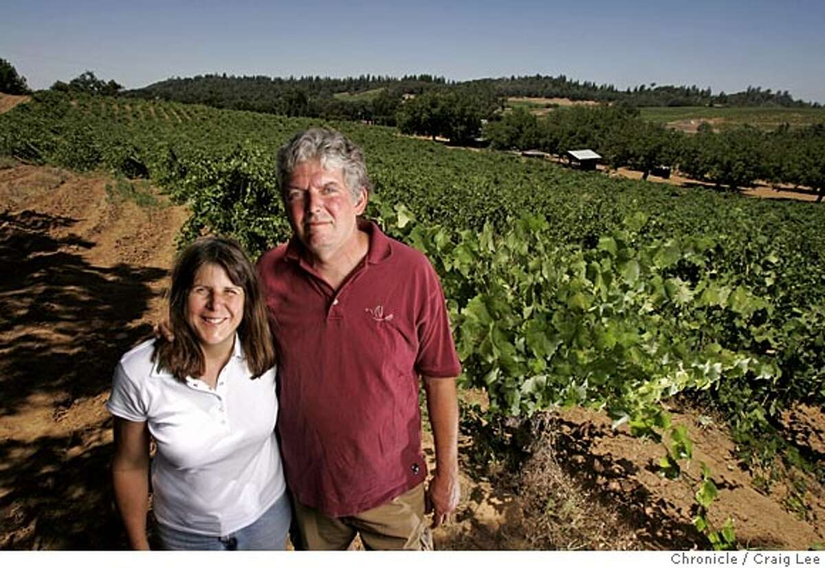 GRANDPERE04_024_cl.JPG Photo of Terri Harvey and her boyfriend, Gordon Binz in the Original Grandpere Vineyard. The Original Grandpere Vineyard which is California's oldest vineyard and and the soap opera surrounding it. The vineyard is owned by Terri Harvey. Gordon Binz is Terri Harvey's boyfriend and winemaker at Renwood. Robert Smerling is owner/president of Renwood winery. Event on 7/25/05 in Plymouth. Craig Lee / The Chronicle Ran on: 08-07-2005 MANDATORY CREDIT FOR PHOTOG AND SF CHRONICLE/ -MAGS OUT