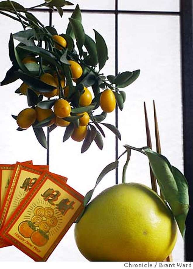 A kumquat tree, a leafy pomelo and red money packets represent prosperity and good fortune in the Chinese New Year. Chronicle photo, 2005, by Brant Ward