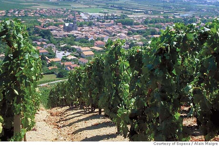 Vineyards of the Cornas viticultural region, in the Rhone Valley of France. Photo by Alain Maigre/Courtesy of Sopexa Photo: Alain Maigre/Courtesy Of Sopexa