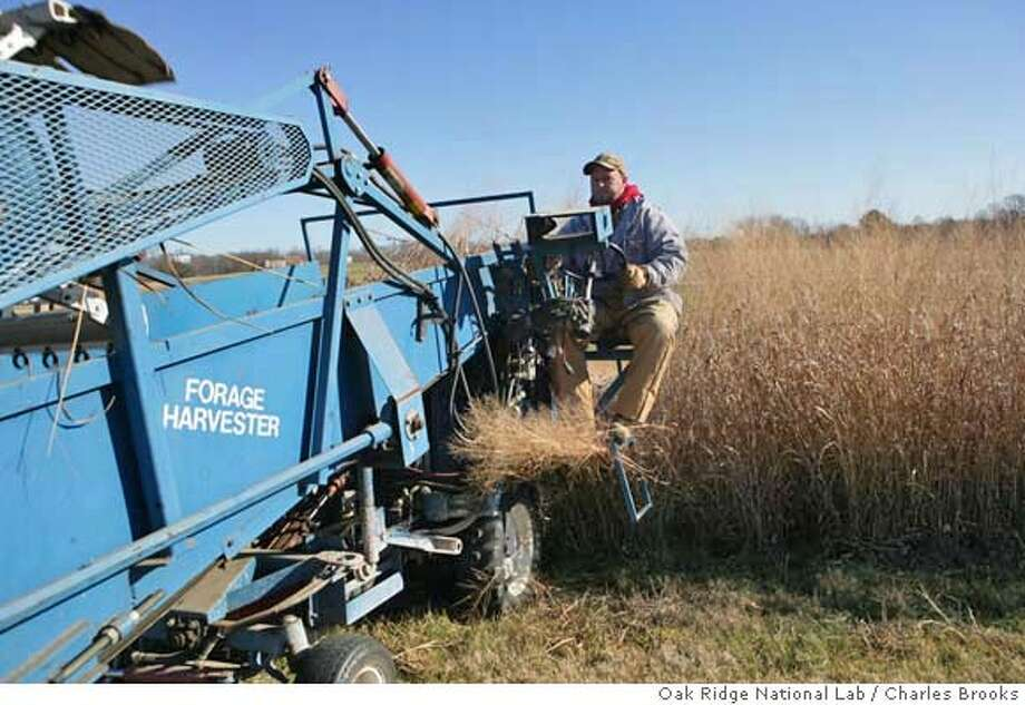 In a December 2006 photo provided by the Oak Ridge National Laboratory, Derick Hopkins is shown cutting switchgrass, a potential biofuel, at the University of Tennessee's Agricultural Institute in Knoxville, Tenn. The federal lab is partnering with UT and several other universities and companies in a bid to host a $125 million bio-energy center. (AP Photo/Oak Ridge National Lab, Charles Brooks) ** ** PROVIDED BY OAK RIDGE NATIONAL LAB, COURTESY CHARLES BROOKS, Photo: Charles Brooks