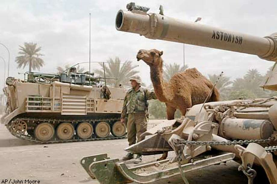 U.S. Army PFC. Nicholas Myhre holds back a camel as military traffic passes into the presidential palace complex in Baghdad Tuesday, April 15, 2003. The young male camel, which tank crews from A Company 4th Battalion 64 Armor Regiment unknowingly named Josephine, approached them early that morning and stayed. (AP Photo/John Moore) Photo: JOHN MOORE