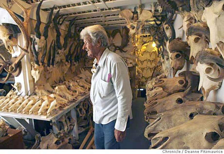 This is Ray's basement. Ray Bandar is a biologist who collects animal skulls. He has 6,000 animal skulls in his home. Photographed in San Francisco on 1/17/07. Photo / Deanne Fitzmaurice Photo: Deanne Fitzmaurice