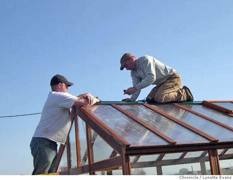 Pro job. Bruce Noble (right), owner of Sierra Greenhouse in Placerville, and Brett Elder nail flashing over the roof peak of the new greenhouse. Chronicle photo by Lynette Evans