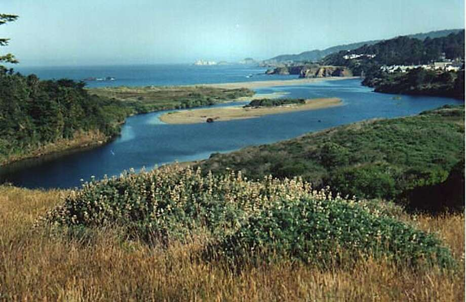 The Gualala River Photo: Rosemary Hocker