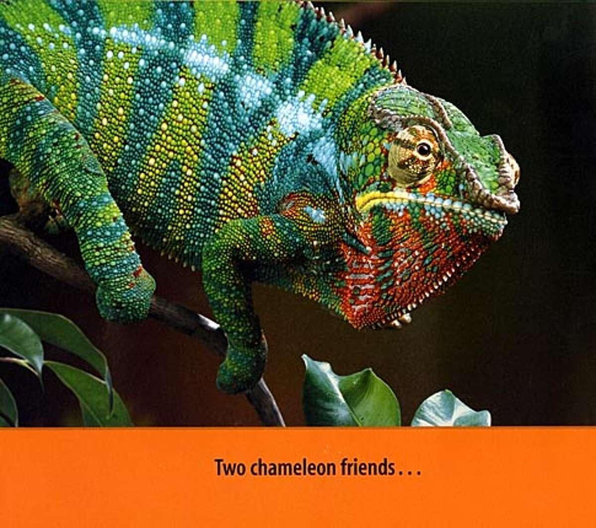 From Chameleon, Chameleon BookReview#BookReview#Chronicle#06-26-2005#ALL#2star#e6#0423032655