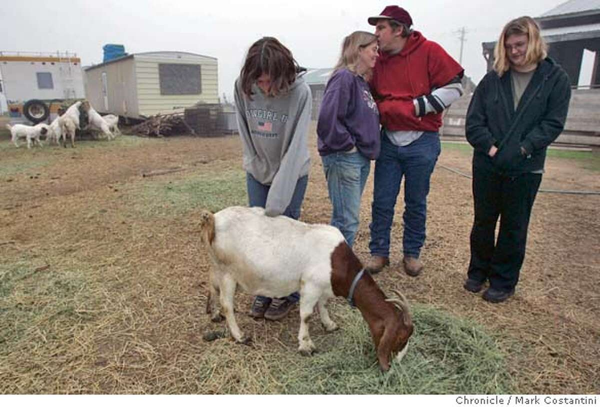 jim and eileen hanson(center) and their daughters Joy(petting goat and jamie(right) on the family's ranch. jim and eileen hanson(center) and their daughters Joy(petting goat and jamie(right) lost their 16-year-old son, joel, last dec. 29. he was shot to death at a friend's house and his organs were donated. they saved the lives of matt callison (new heart) and carrie shellhammer (double lungs). this story looks at how their year has gone and how they're coping. Mark Costantini / The Chronicle