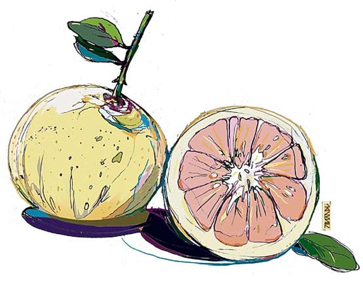 Grapefruit. Chronicle illustration by Lance Jackson