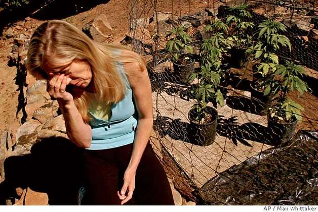 Plaintiff Diane Monson sits next to her marijuana plants at her Oroville, Calif., home on Monday, June 6, 2005. Federal authorities may prosecute sick people whose doctors prescribe marijuana to ease pain, the Supreme Court ruled Monday, June 6, 2005, concluding that state laws don't protect users from a federal ban on the drug. (AP Photo/Max Whittaker) Photo: MAX WHITTAKER