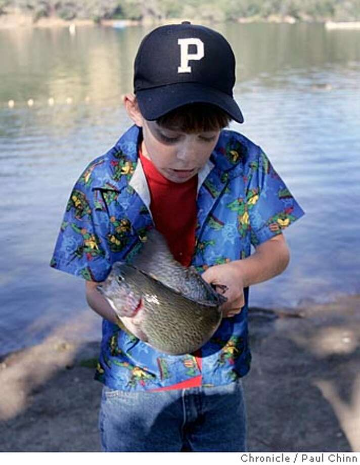 Alex Broughton, 6, of Pleasanton, struggled to hold onto his first catch of the day: 1 lb., 6 oz. rainbow trout at the Family Fishing Days event at Lake Del Valle Regional Park on 5/21/05 in Livermore, Calif. Anglers of all ages hooked rainbow trout in an enclosed area of the lake for a can't-miss experience.  PAUL CHINN/The Chronicle Photo: PAUL CHINN