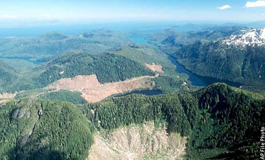 ** FILE ** A section of the Tongass National Forest on Prince of Wales Island in Alaska, is shown in this aerial photo taken in 1990. The patches of bare land in the center of the photo show where clear-cutting has occurred. Bush administration efforts to speed logging and fire-prevention projects in national forests was set back by a federal appeals court ruling Thursday, Dec. 12, 2002, whose most immediate impact could be to halt road building in some Idaho roadless areas and planned timber sales in southeastern Alaska, including the Tongass National Forest. (AP Photo/Ketchikan Daily News, Hall Anderson, File) ALSO RAN 12/14/02 Photo: HALL ANDERSON