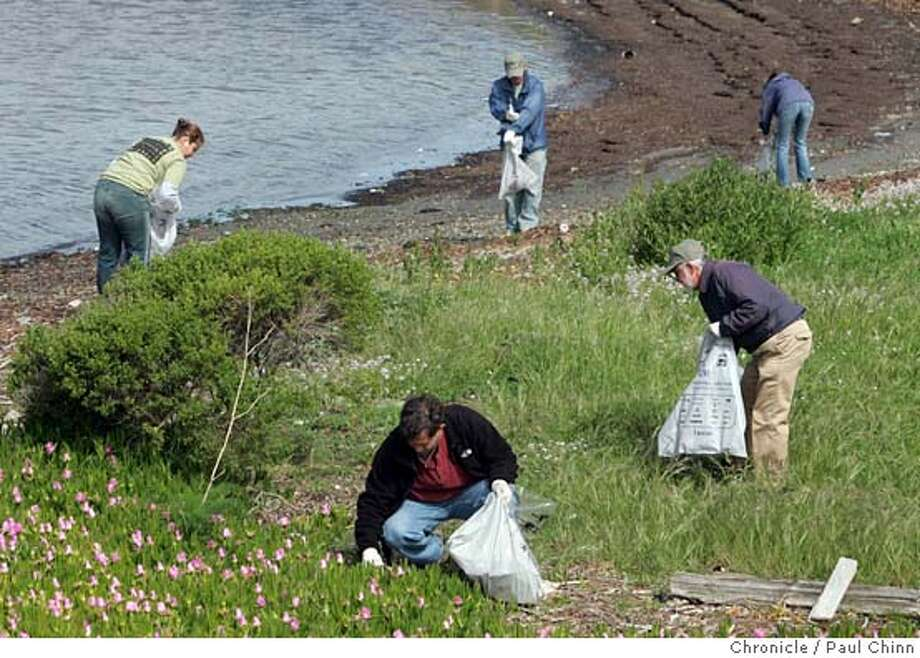 cwearthday_009_pc.jpg  For Chronicle Watch: Volunteers fanned out across Eastshore State Park to remove trash and non-native plants on Earth Day on 4/23/05 in Berkeley, CA.  PAUL CHINN/The Chronicle MANDATORY CREDIT FOR PHOTOG AND S.F. CHRONICLE/ - MAGS OUT Photo: PAUL CHINN