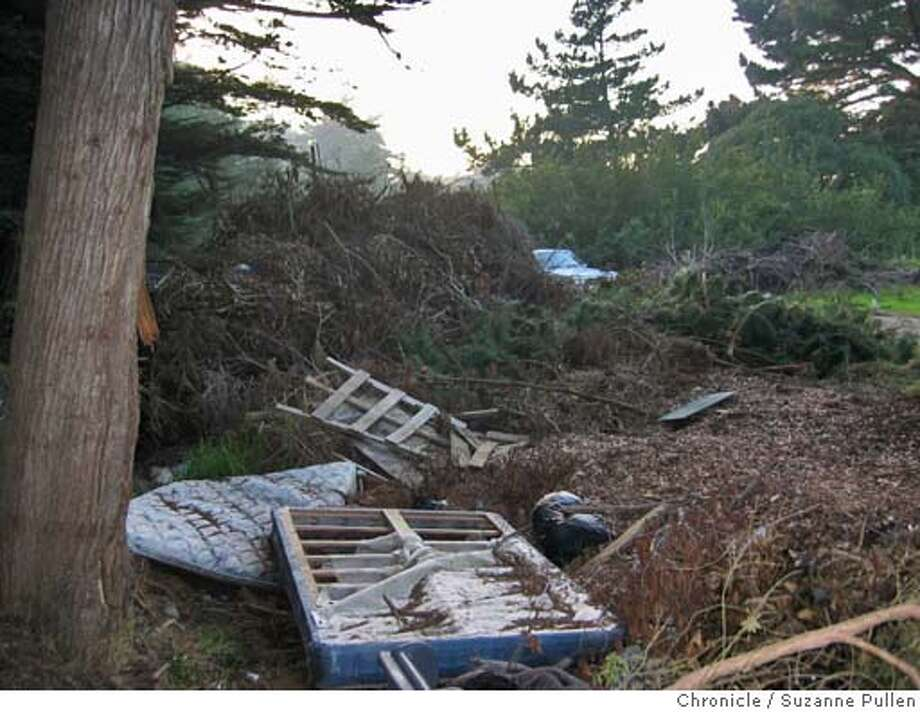 cwlegiondump03.JPG FOR CHRONICLEWATCH USE ONLY: People are dumping trash and household items like mattresses, car seats and water heaters in the bushes of the parking lot tipster says is shared by Legion of Honor and Veterans hospital. .11/17/04 in San Francisco. Suzanne Pullen / The Chronicle Metro#Metro#Chronicle#11/28/2004#ALL#5star##0422473508 Photo: Suzanne Pullen