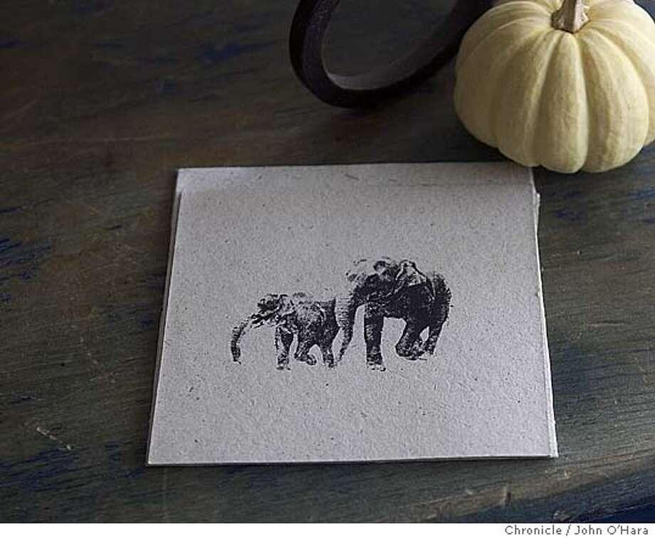 S F Chronicle, stuido.  Stationery made from Elephant Dung. Photo: John O'Hara