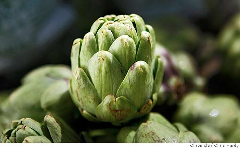 seasonal11_ch_020.jpg  Baby artichoke story with them in the field at Ed Riley's farm in Half Moon Bay  5/5/05 Chris Hardy / San Francisco Chronicle Photo: Chris Hardy