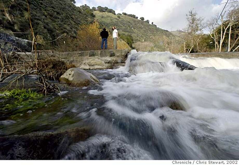 STEELHEAD03-C-14JAN02-MT-CS Naturalist Jeff Miller has been fighting to save steelhead trout that swim up Alameda Creek in Niles Canyon to the clear pools where the California native species bred, before dams and other obstructions blocked the way, including the 60-foot-long Niles dam. NOTE: this assignnment should have been set up to reflect the assignment summary - volunteers catching fish to toss them over the obstructions. The reporter was told by the naturalist that this should be shot after a storm. This was an inappropriate day to shoot pictures and seemed to be set up at the convenience of reporter. At my suggestion, story has now been held until publishable photos can be taken. BY THE CHRONICLE CAT NORTHERN CALIFORNIA MANDATORY CREDIT: PHOTOG AND SF CHRONICLE/ , MAGS OUT