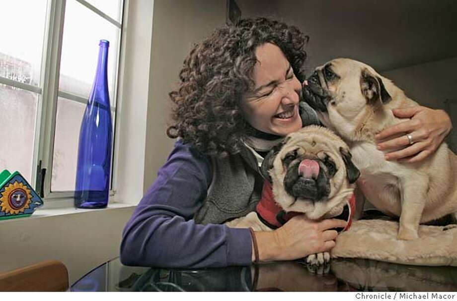 "Nancy Levine with her two Pug dogs, Wilson, (left) and Homer. Berkeley author Nancy Levine has written a couple of books from the point of view of her pugs, ""The Tao of Pug"" and ""Homer for the Holidays.""  10/23/04 Berkeley, CA Michael Macor / San Francisco Chronicle Photo: Michael Macor"
