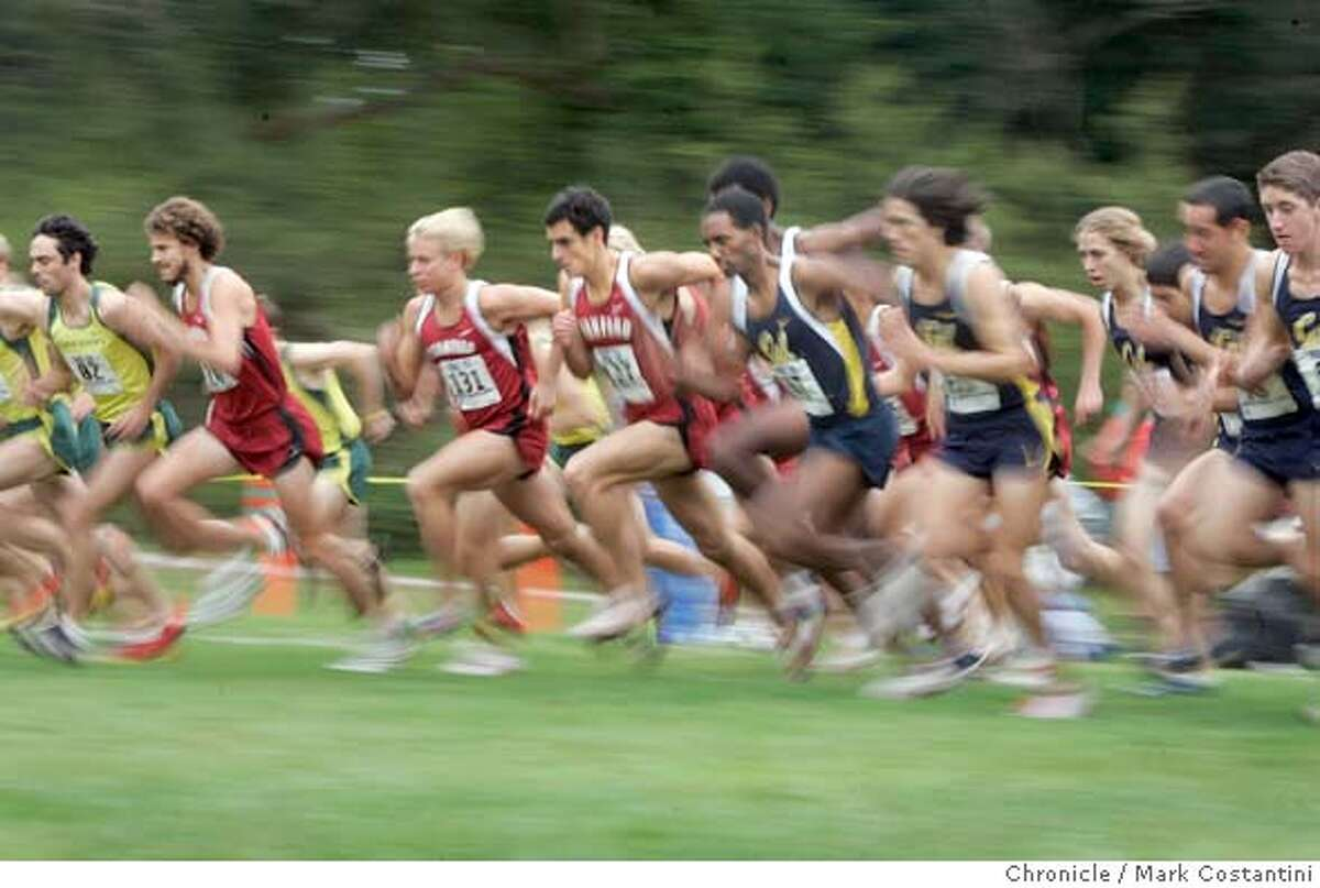 Start of the men's race. The Pac-10 holds its women's and men's xcountry championships Saturday morning at Golden Gate Park. 10/30/04 in SAN FRANCISCO S.F. Chronicle photo by Mark Costantini. Sports#Sports#Chronicle#10/31/2004#ALL#5star##0422441277