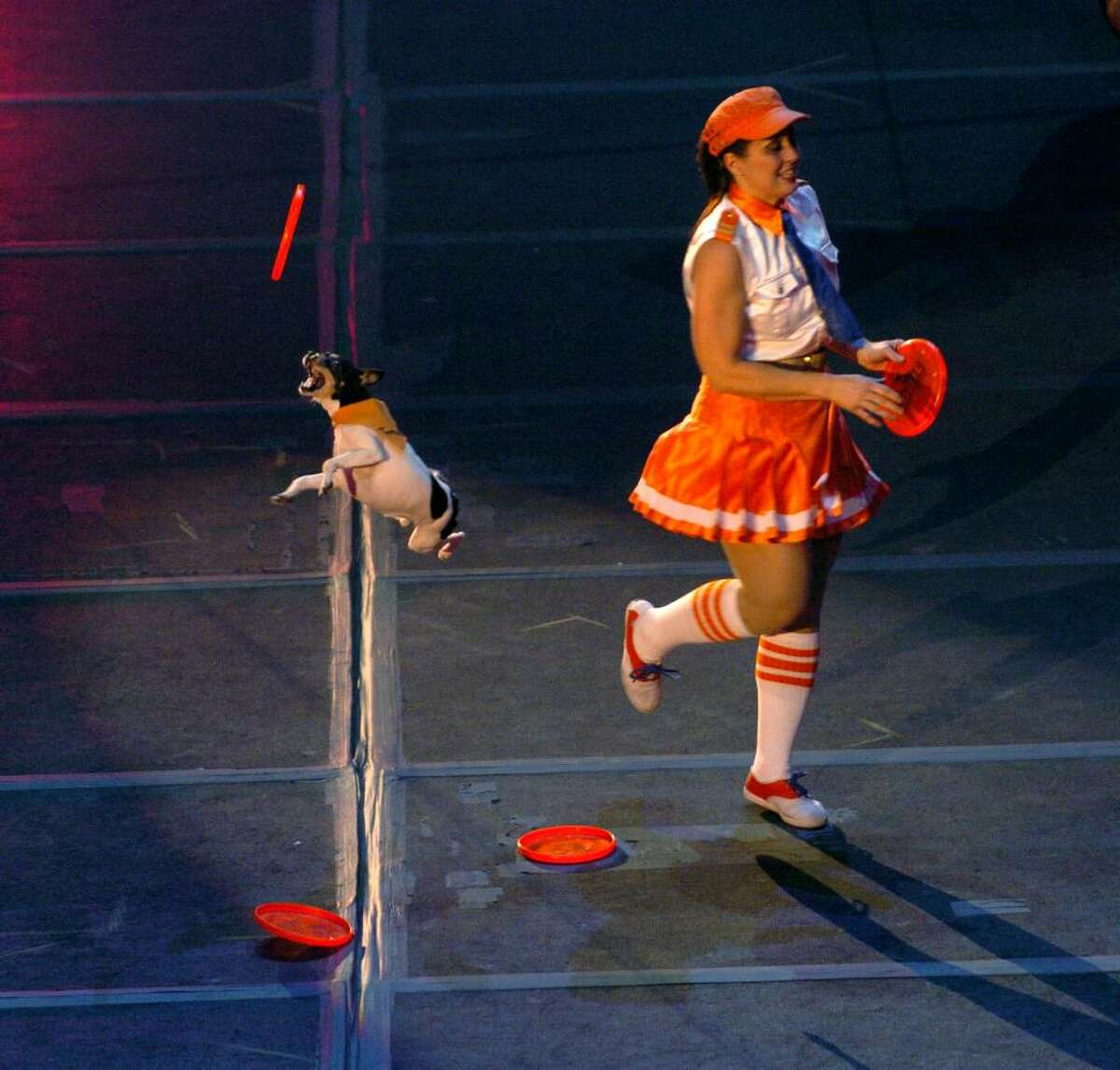 Gail Mirabella and the High Flying Dynamic Dogs perform at the Ringling Brothers Barnum and Bailey