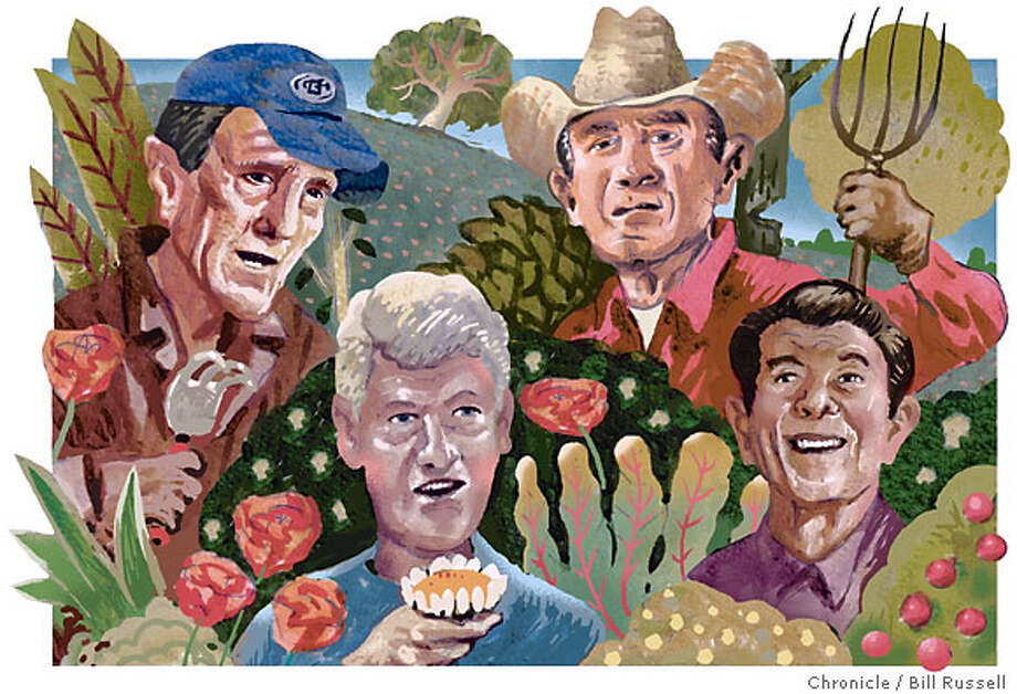 Imagining Reagan, Clinton, Bush and Kerry on a visit to the garden. Chronicle illustration by Bill Russell