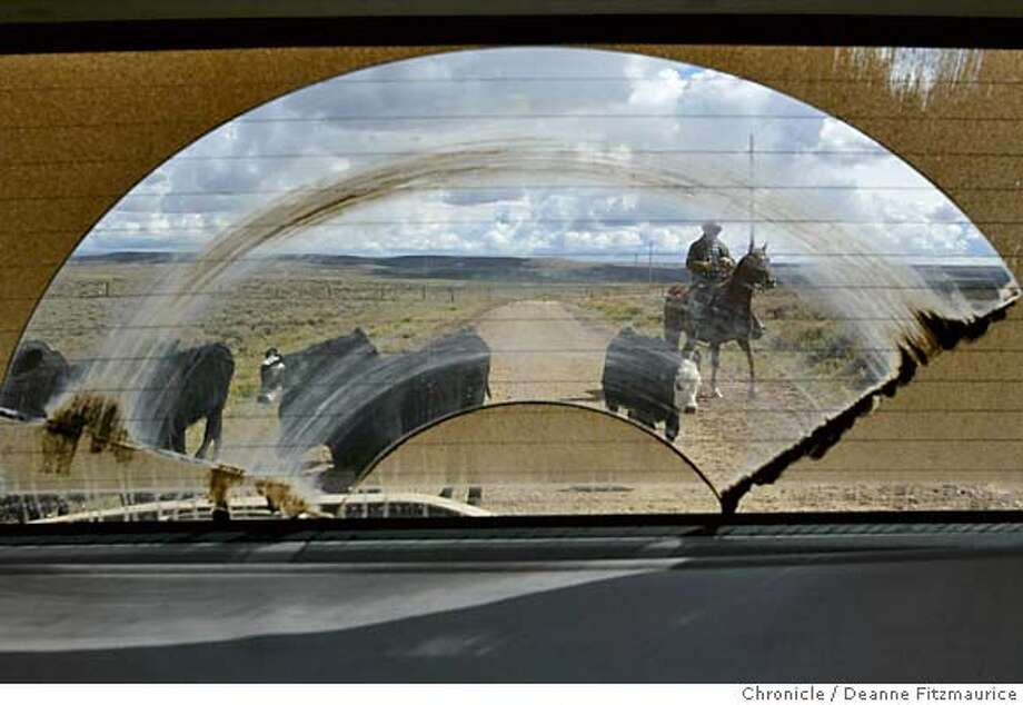 energy_234_df.JPG  John Andrikopoulos drives cattle on his ranch in the Pinedale area. Drilling has begun on his land. There is a boom in natural-gas production in Wyoming, particularly in this Pinedale area. Drilling is taking place along a migratory route for animals including elk and antelope. Most ranchers have no mineral rights to their land and lose land value and production as drilling takes place on their property.  Deanne Fitzmaurice / The Chronicle MANDATORY CREDIT FOR PHOTOG AND SF CHRONICLE/ -MAGS OUT #MainNews#Chronicle#10/25/2004####0422386245 Photo: Deanne Fitzmaurice