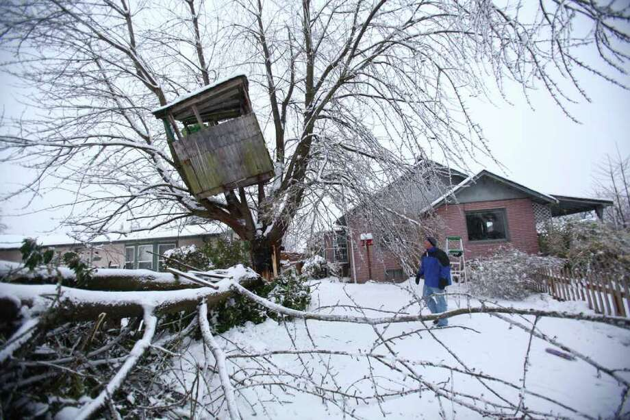 Flynn Elario looks up as a treehouse hangs precariously near his home after a large supporting branch crashed down in Auburn on Thursday, January 19, 2012. An ice storm wreaked havoc in the area, bringing down trees and power lines. Power was out in large parts of the town. Photo: JOSHUA TRUJILLO / SEATTLEPI.COM