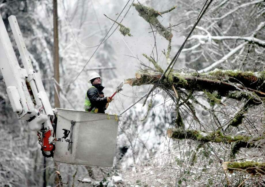 Travis Barrett leans back as branches from a tree spring upward after his electric chain saw cut them from a power line on Thursday in Seattle. See more photos at Chron.com and on the iPad. Photo: Steve Ringman / The Seattle Times