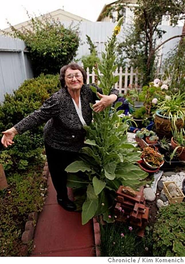(Sima embraces one of the many plants she doesn't know the name of.)  Sima Grabovsky shows us her eclectic San Francisco garden. She worked as a janitor for years and with great frugality has created a lovely garden behind her house from cuttings and castoff things San Francisco Chronicle Photo by Kim Komenich  8/5/05 Photo: Kim Komenich