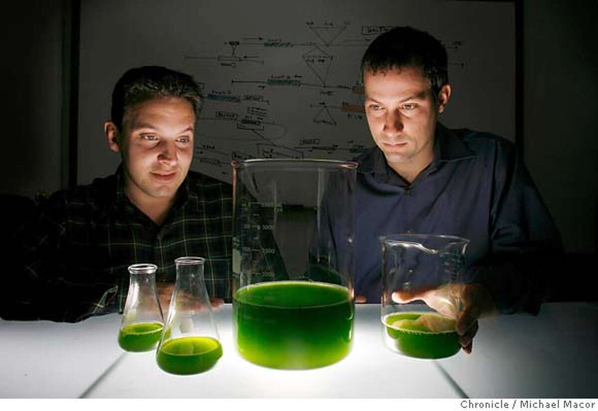 cleantech_112_mac.jpg A sample of the Green Micro Algae with the co-founders, Jonathan Wolfson,(left) and Harrison Dillon of the company
